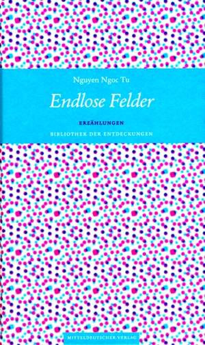 Nguyen Ngoc Tu: Endlose Felder