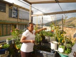 Empowermentprozesse von Frauen in urbaner und solidarischer Landwirtschaft in Bogotá/ Kolumbien